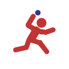nmaa-softball-desktop-icon-new