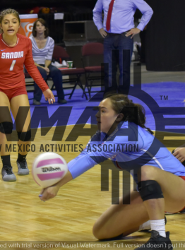 2018-state-volleyball26