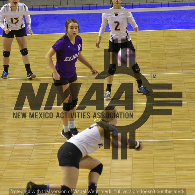 Volleyball Nmaa